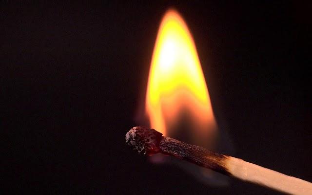 اگر شاعران نخستین شهید واژگان خویش نباشند ...