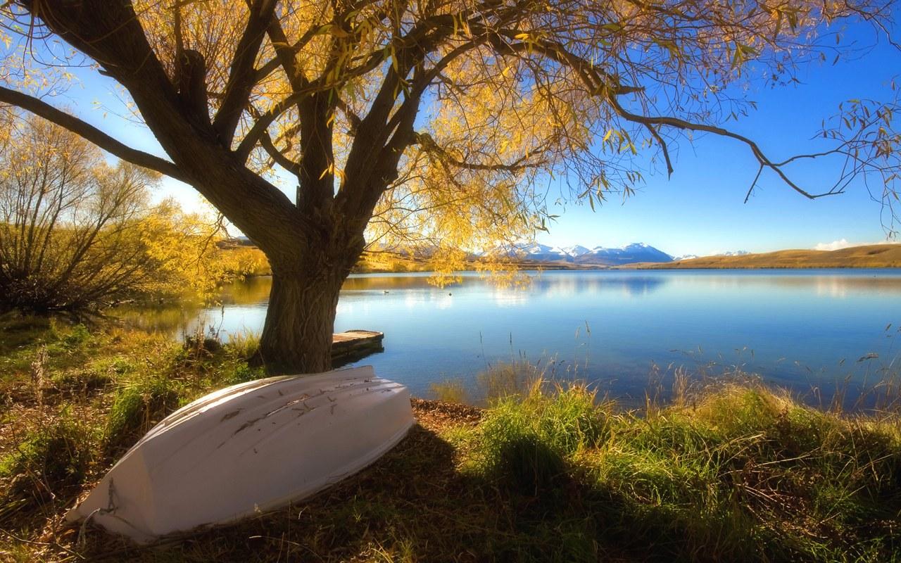 New Zeeland Hd: New Zealand Scenery HD Wallpapers
