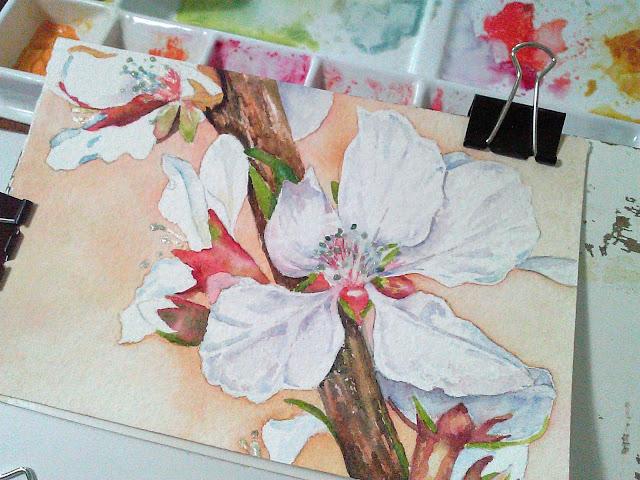 Cherry blossoms in watercolor, an artwork in progress.  Christy Sheeler art studio.