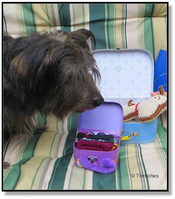 Lotte staunt über Snoopys Gepäck