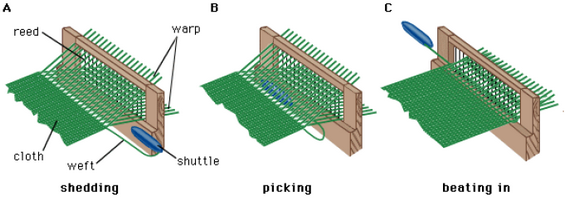 Primary Motions of Weaving