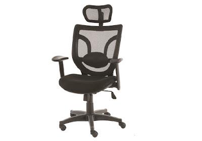 ofis koltuğu,başlıklı koltuk,yönetici koltuğu,makam koltuğu,fileli koltuk,plastik ayaklı