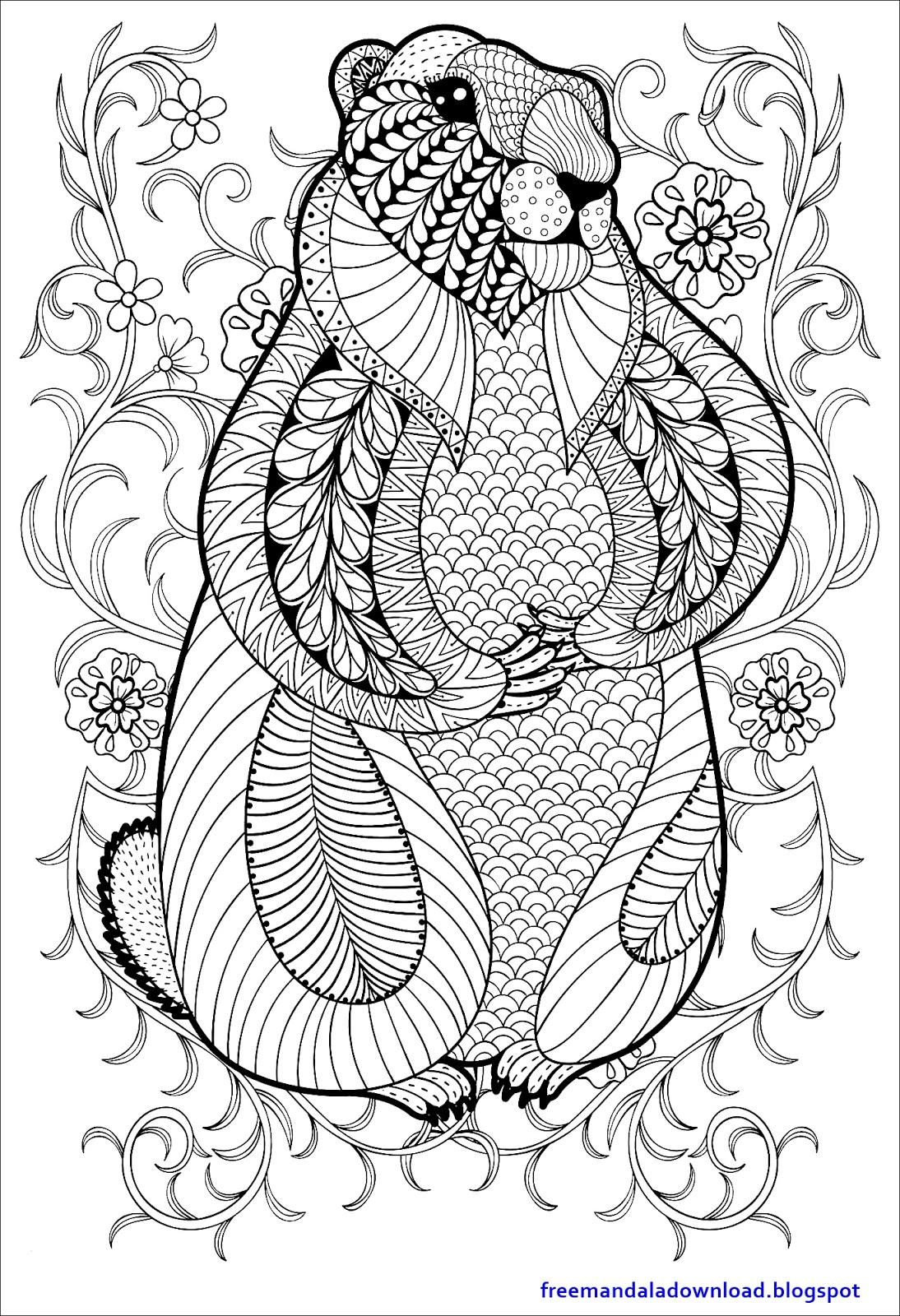 Free Mandala Schwierige Erwachsene Farbseite Mandala Pdf