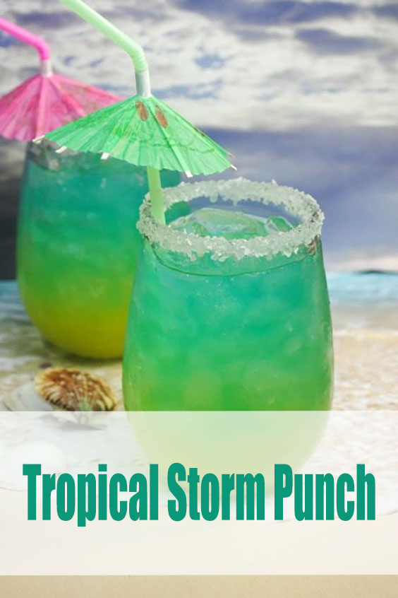 Rum Cocktails Tropical Storm Punch