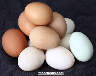 जानिए अंडे से जुड़े रोचक तथ्य | Know interesting facts related to eggs