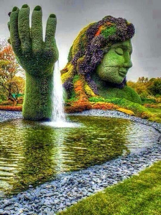 lovely-look-in-garden-image