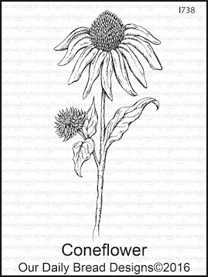 Our Daily Bread Designs Stamp: Coneflower