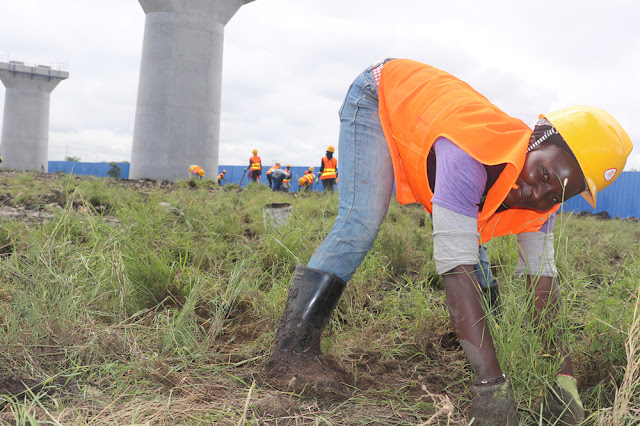 The Curious Case of Ksh 1 Billion SGR Grass That Goes To Sleep