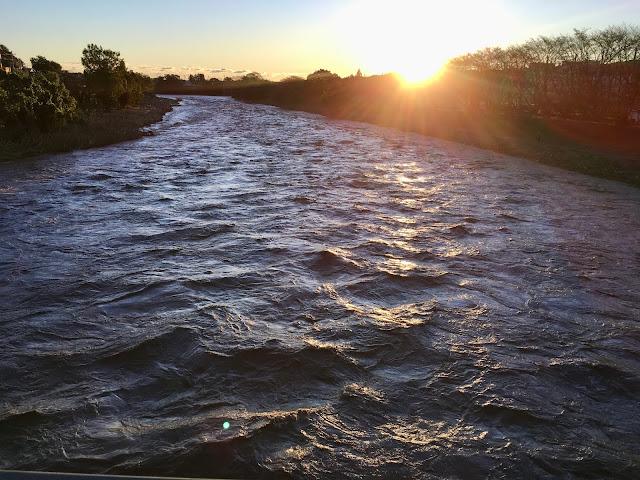 台風19号の豪雨で増水した入間川