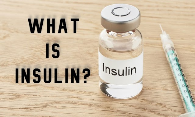 What is Insulin And Types Of Insulin