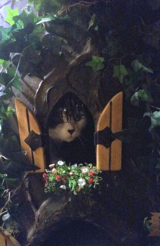Fairy Tale Cat Trees