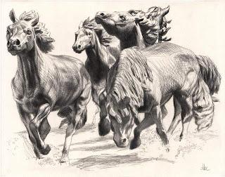 Dibujo a lápiz de caballos corriendo