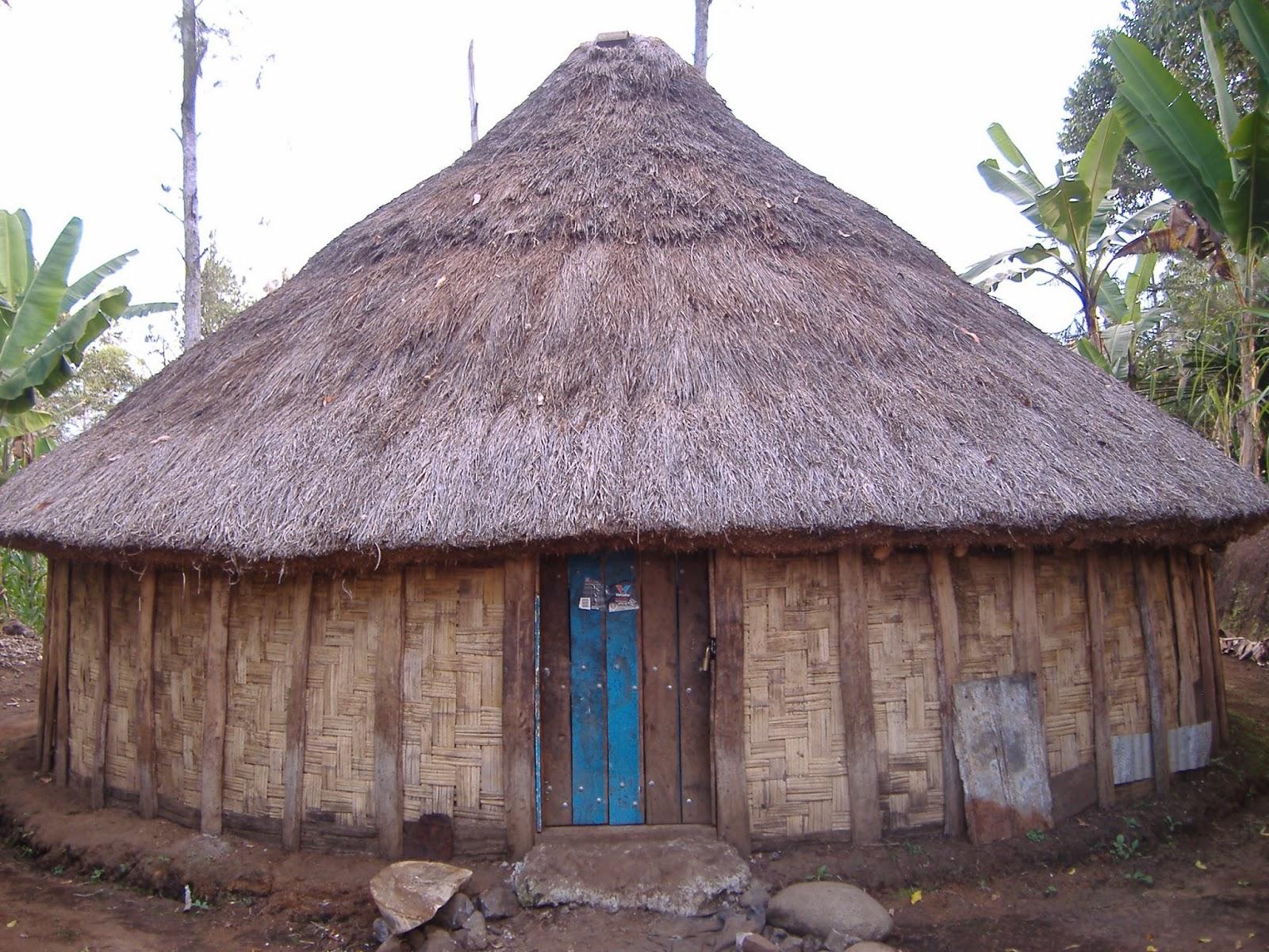 Koleksi Gambar Sketsa Rumah Adat Papua