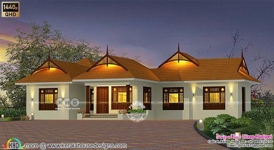 single floor traditional home