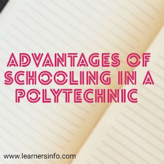 advantages of schooling in a polytechnic