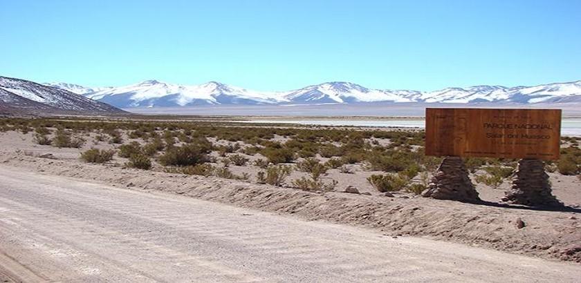 Salar del Huasco, new Chilean Nature Reserve.