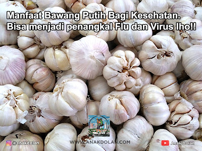 Manfaat Bawang Putih Bagi Kesehatan. Bisa menjadi penangkal Flu dan Virus lho!!