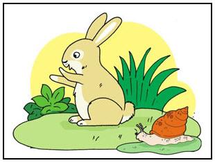 Hewan vertebrata dan Hewan avertebrata