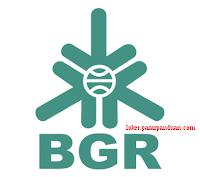 lowongan kerja seluruh Indonesia BUMN terbaru BGR Logistics mei 2019 (9 posisi)