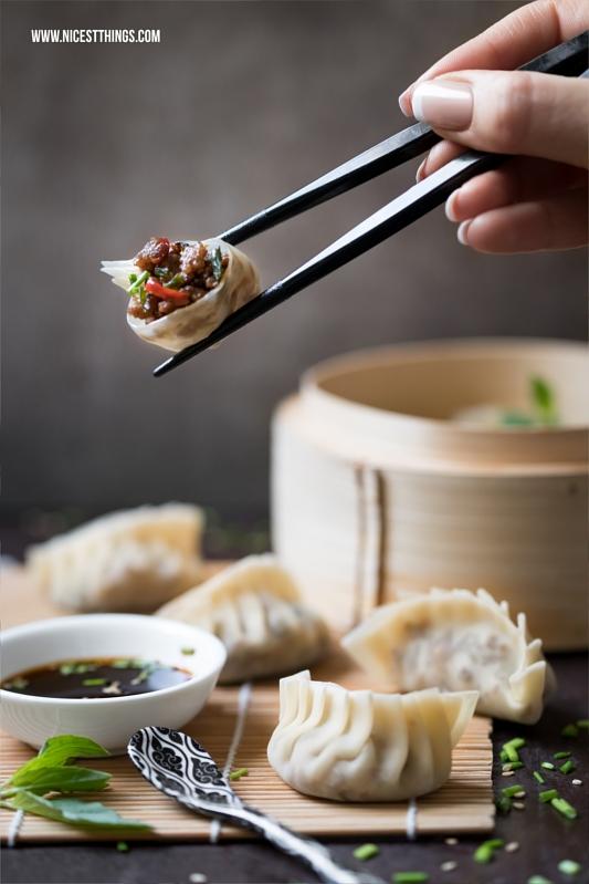 gyoza jiaozi dim sum dumplings ged mpfte asiatische. Black Bedroom Furniture Sets. Home Design Ideas