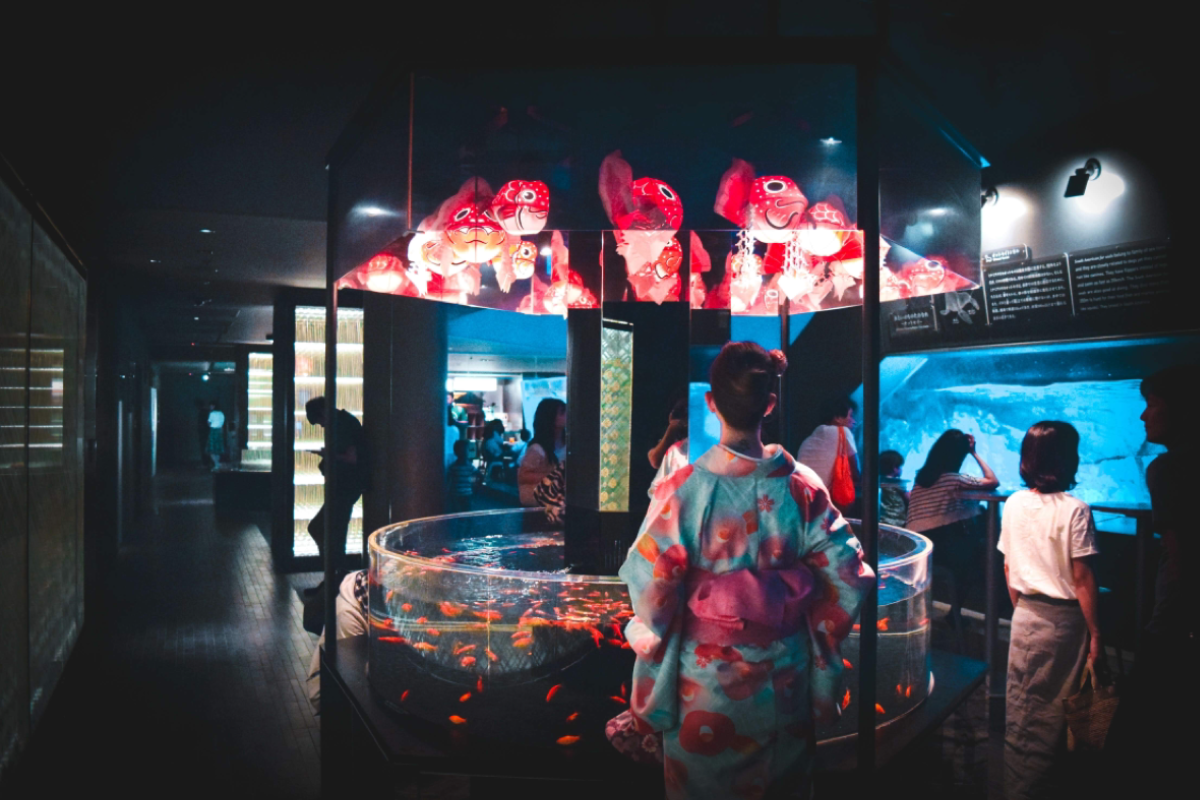 dreamlikediana in Japan wearing a Kimono respectfully looking at the goldfish in the Tokyo Skytree Aquarium