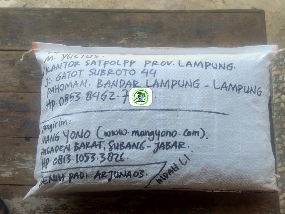 Benih Padi yang dibeli M. YULIUS Bandar Lampung, Lampung.   (Setelah packing karung).