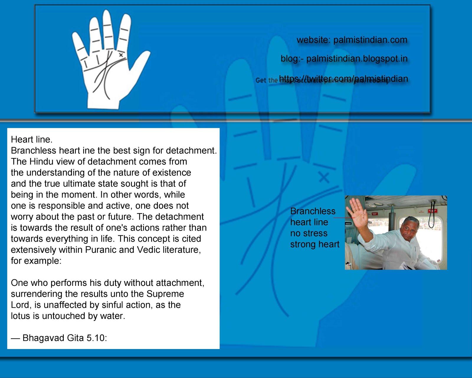 Best Palmistry Blog Palmist India Manish: February 2016