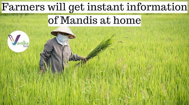 mandi update