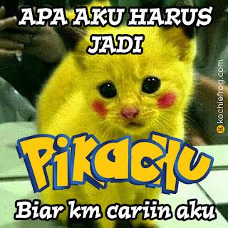 Gambar2 Lucu Meme Pokémon, DP BBM Bergerak Pokemon Go