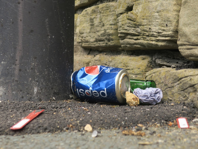 Pepsi can, green bottle, screwed up paper and a bit of stone on tarmac pavement behind lampost.