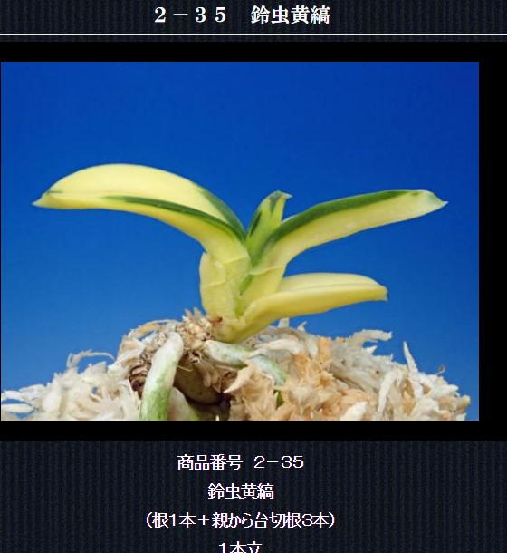 http://www.fuuran.jp/2-35html