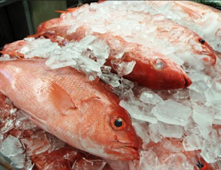 ikan didinginkan dengan es