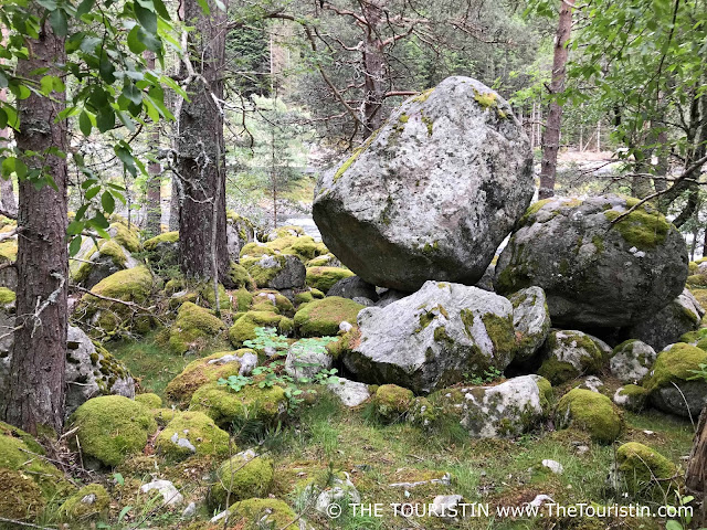 Boulders in the forest near Hæreid in Eidfjord in Norway.