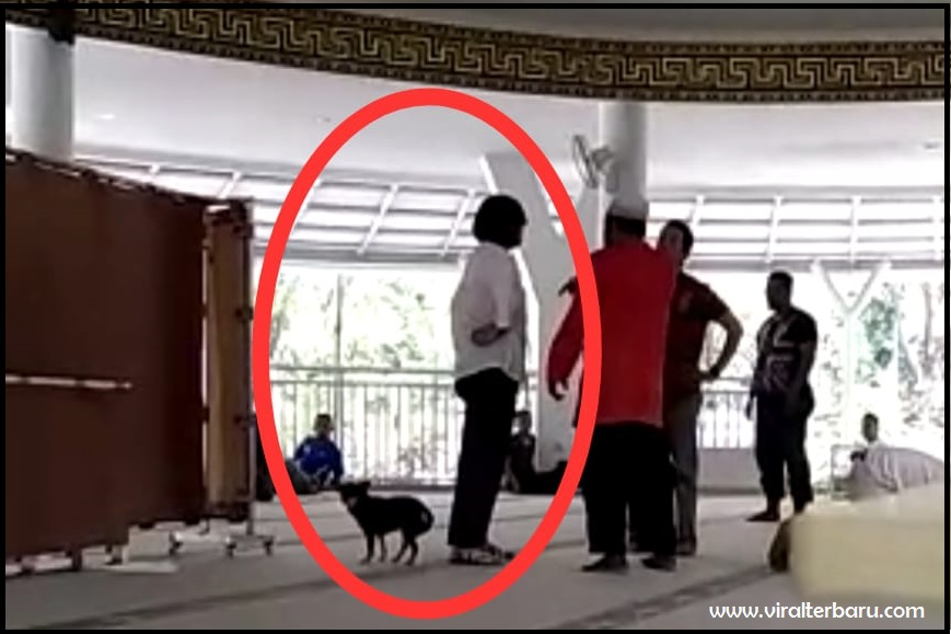 Wanita Paruh Baya Bawa Anjing Masuk ke Masjid, Ini Penjelasan Kapolres
