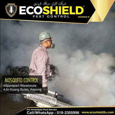 Fogging - Mosquito Control