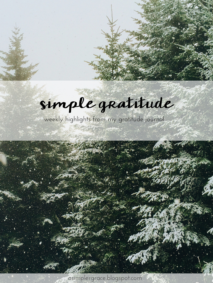 Today I'm sharing my #gratefulheart on the blog. Come by and tell me what you're grateful for. #gratitude #feelingthankful