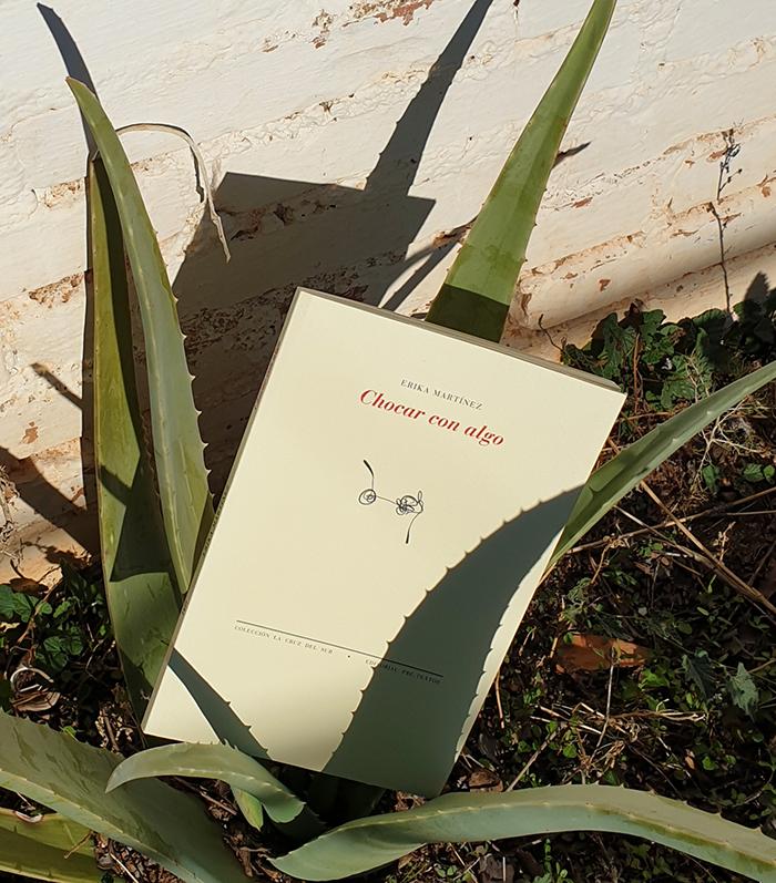 Erika Martínez en «Lunes de Poesía»