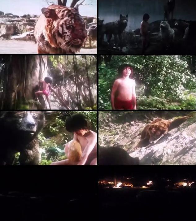 The Jungle Book 2016 Dual Audio Hindi 480p HDCAM