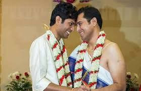 gay meaning in hindi
