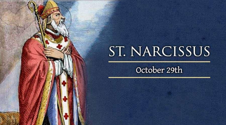 Santo narcissus