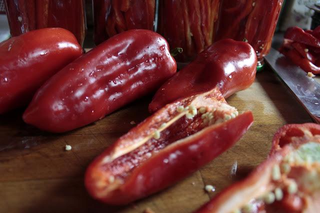 papryka konserwowa marynowana słodka kuchnia kulinaria najlepszy przepis