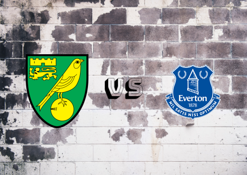 Norwich City vs Everton  Resumen
