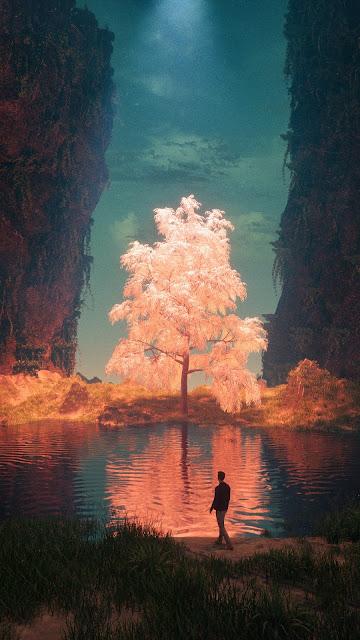 Árvore, Lago, Raio De Luz, Arte