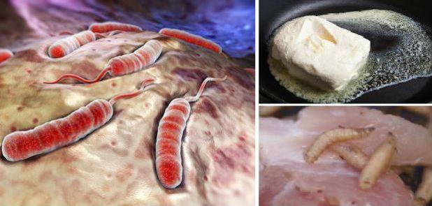 Makanan Ini Mengandung Racun Paling Berbahaya