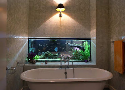 How to make wall aquarium and wall fish tank DIY, wall mounted aquarium wall aquarium Diy, wall fish tank, wall mounted aquarium for bathroom