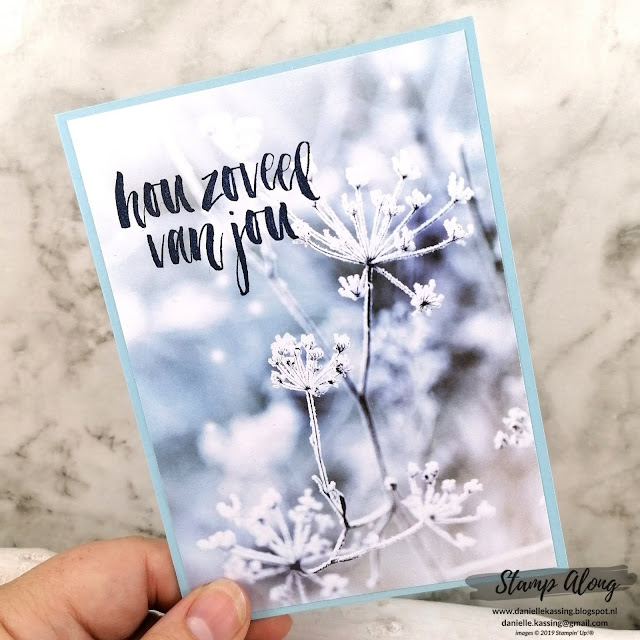 Stampin' Up! Feels like frost
