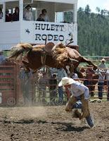 sela montaria em cavalo - rodeio