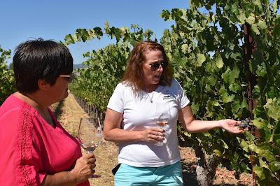2 women in vineyard