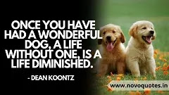 Cute sentimental dog quotes