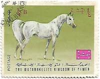 Selo Cavalo Árabe Branco
